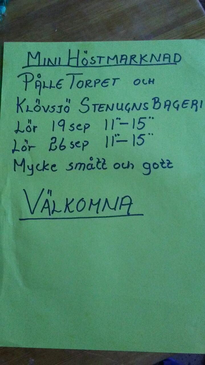Pålletorpet minihöstmarknad20200901_120451.jpg