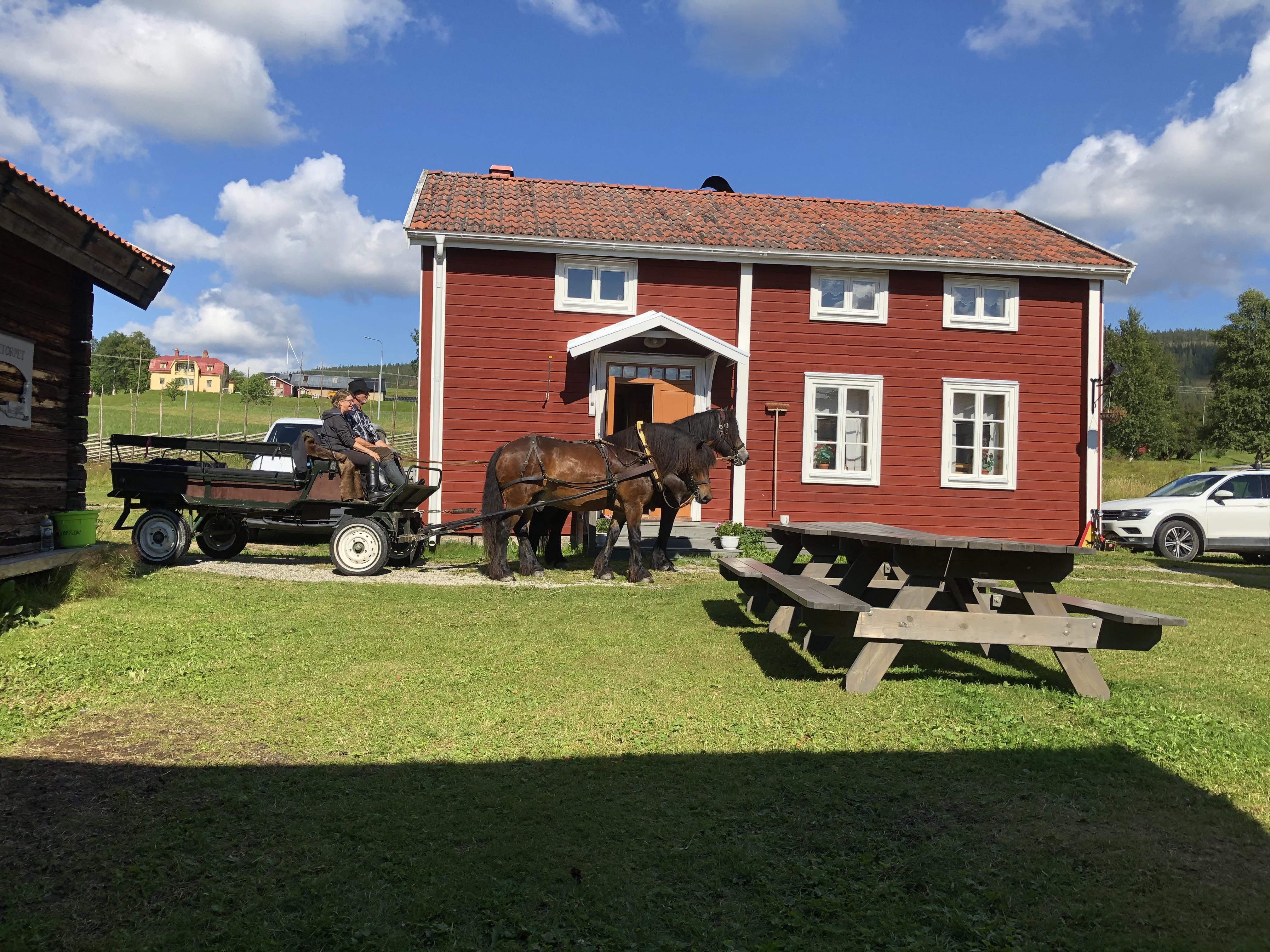 FFK Pålletorpet sommar.jpg