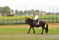 Hästparad1.jpg