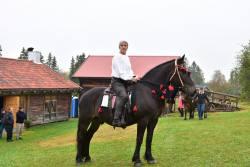 Hästparad4.jpg