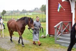 Hästparad13.jpg